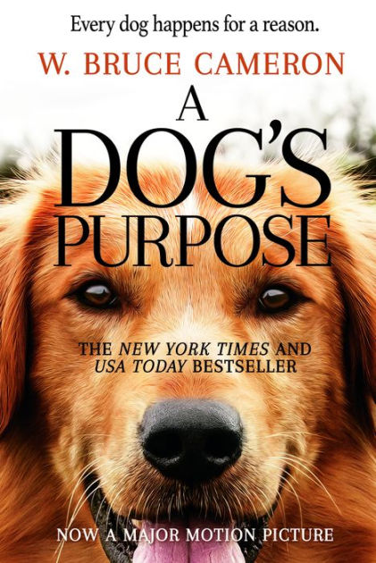 A dog looks to discover his purpose in life over the course of several lifetimes and owners.