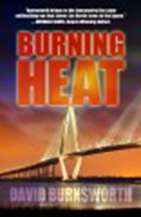 Burning heat / David Burnsworth